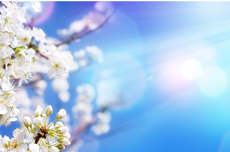 Luce solare naturale spea tecnologie edili - Specchi riflettenti luce solare ...